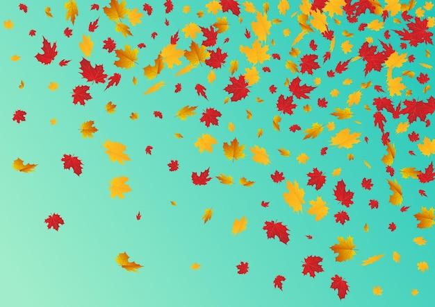 빨간 잎 벡터 파란색 배경입니다. 컬렉션 리프 프레임입니다. 브라운 다운 단풍 그림입니다. 추상 텍스처입니다.
