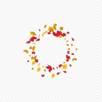 赤い葉ベクトル透明な背景。美しい葉のカード。カラフルな明るい植物テンプレート。フライングテクスチャ。