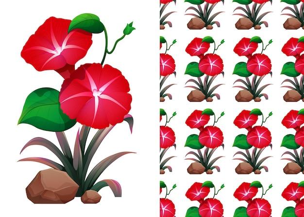 赤いアサガオの花のシームレスなパターンとイラスト
