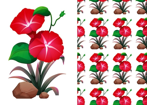 Red morning glory flower seamless pattern and illustration