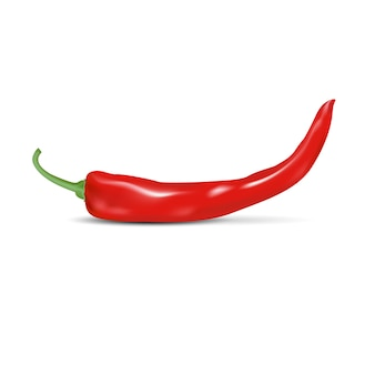 Red natural chili pepper with shadow isolated