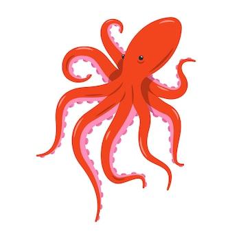 Красный осьминог изолирован