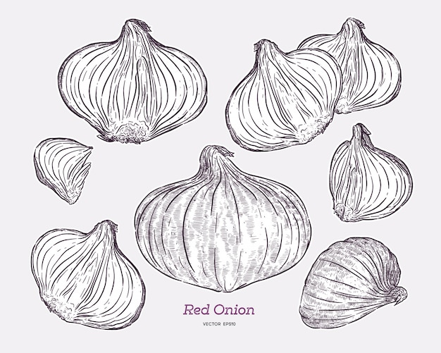 Red onion collection