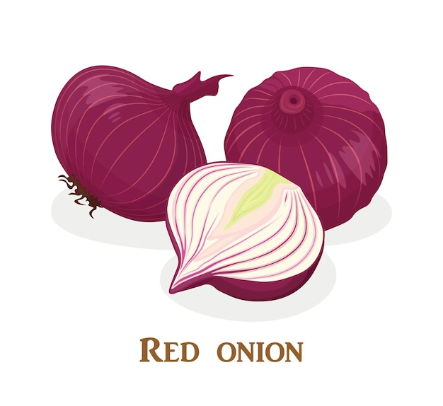 Red onion whole and half slice.