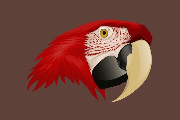 Рисунок руки красный попугай