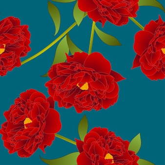 Red peony flower on teal indigo background