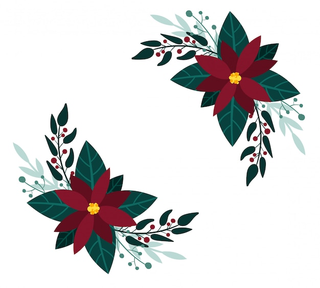 Красные цветы пуансеттии. рождественские букеты, зимняя зелень. дизайн новогодней открытки.