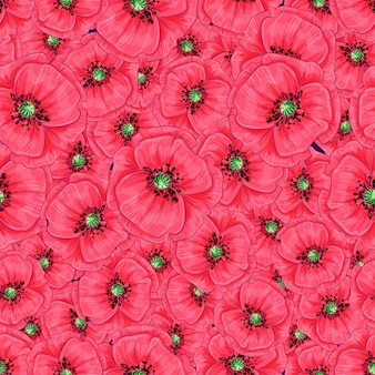 Red poppies and daisies seamless pattern. hand drawing.