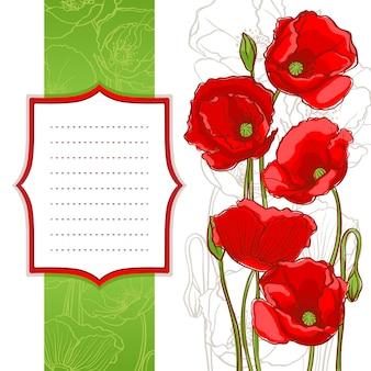 テキストのための場所を持つフレームと白い背景の赤いケシ