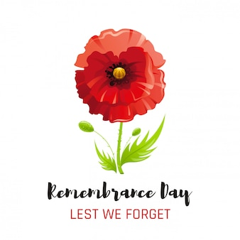 Red poppy flower symbol, remembrance day poster, memory banner.