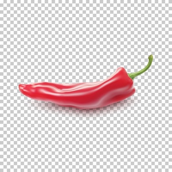 Red realistic pepper isolated on transparent background
