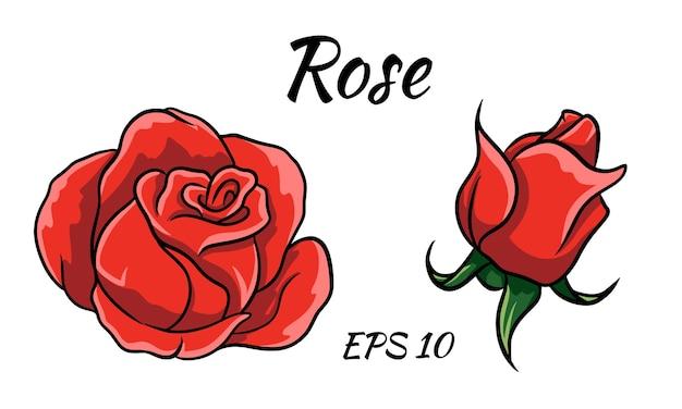 흰색 바탕에 빨간 장미 만화 스타일입니다. 빨간 장미 꽃 봉오리.