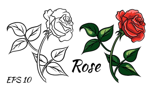Red rose cartoon style on a white background. red rose on the stem