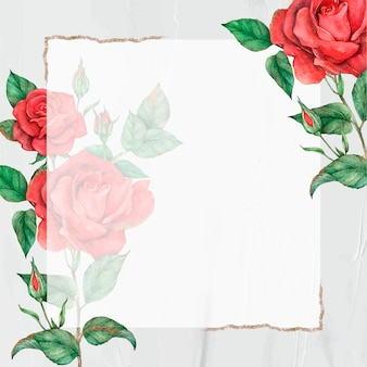 Red rose vector gold border frame