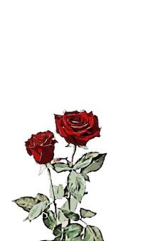 빨간 장미 수채화