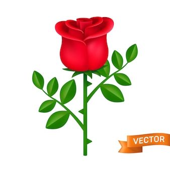 Red rose with green leaves.