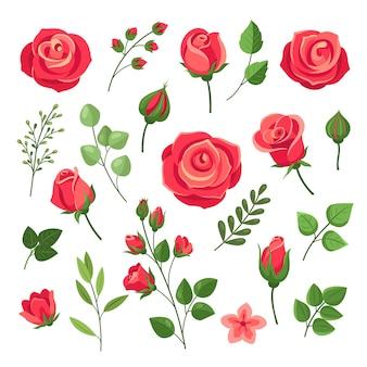 赤いバラ。緑の葉とつぼみのあるブルゴーニュのバラの花の花束。水彩花のロマンチックな装飾。孤立した漫画セット。ピンクと赤の咲くバラ、枝の花の花のイラスト