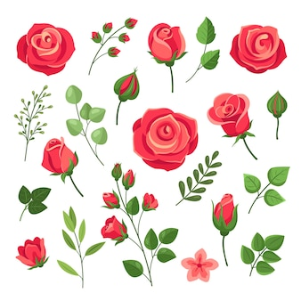 Red roses. burgundy rose flower bouquets with green leaves and buds. watercolor floral romantic decor. isolated cartoon set. pink and red blooming rose, branch floral blossom illustration