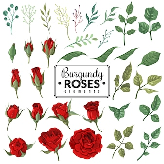Red roses. garden burgundy rose flowers, floral bouquets with buds and green leaves for wallpaper