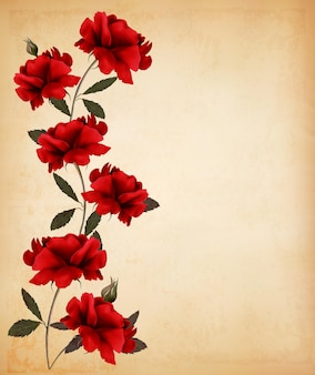 Red roses on old paper background.