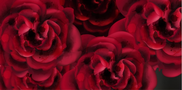 Red roses watercolor background