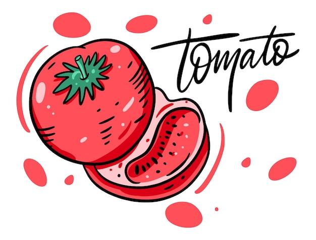 빨간 토마토 전체와 슬라이스.