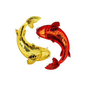 Red and yellow koi carps yin yang symbol vintage vector hatching color