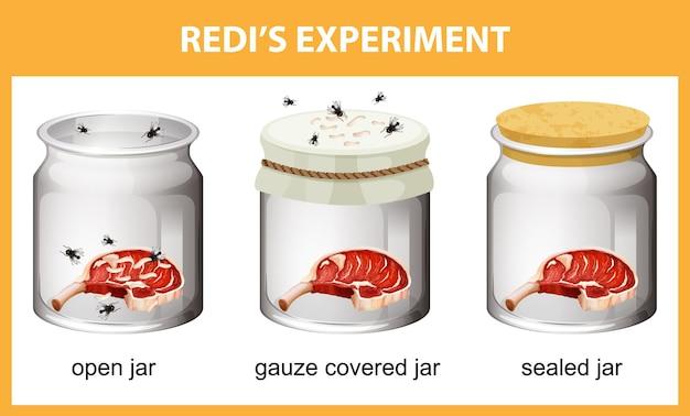 Redi의 교육용 실험 다이어그램