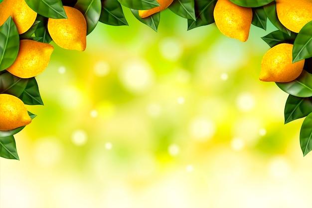 Refreshing lemon orchard frame with bokeh glittering green background in  illustration