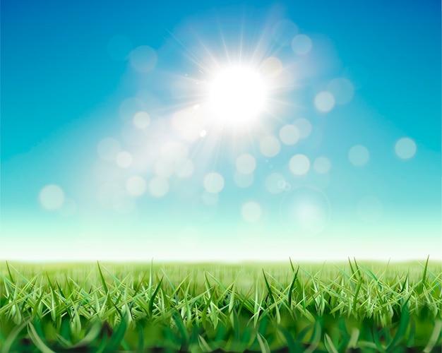 輝く日光と緑の草原でさわやかな自然の背景
