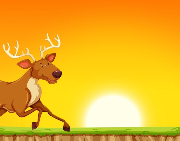 Reindeer running past sunset