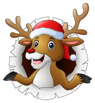Reindeer in santa hat tearing through the background