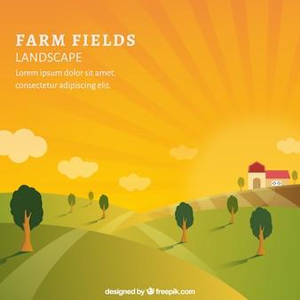 Rilassante paesaggio agricolo
