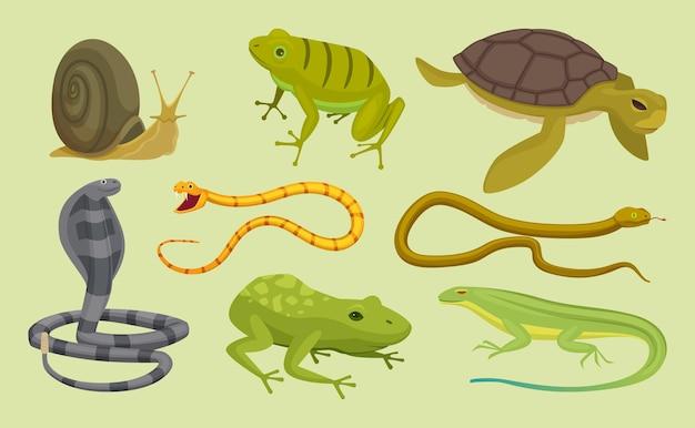파충류 세트입니다. 도마뱀 뱀 거북이 달팽이 만화 벡터 야생 동물. 도마뱀과 거북이, 뱀 동물 파충류 일러스트