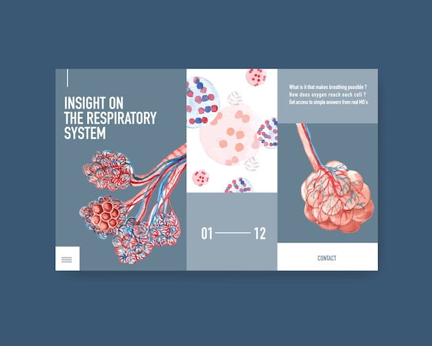 肺の人体解剖学を使用したウェブサイトテンプレートの呼吸システムの設計