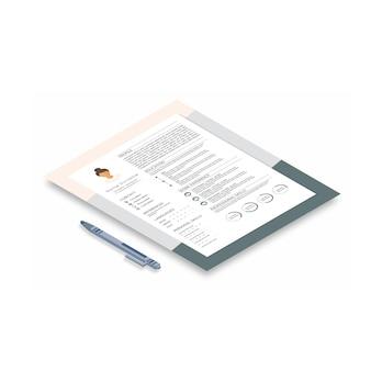 Resume with infographic design. stylish cv
