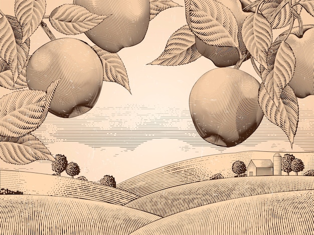 Retro apple orchard, engraving countryside scenery for  uses, attractive background