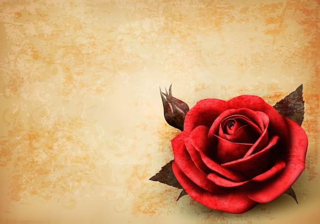 꽃 봉 오리와 아름 다운 붉은 장미와 함께 레트로 배경