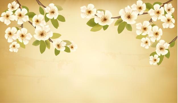 花の咲く木のブランチと白い花とレトロな背景。