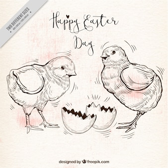 Retro background with two chicks for easter day