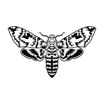 Retro black moth. clipart illustration