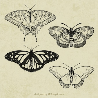 Retro butterflies