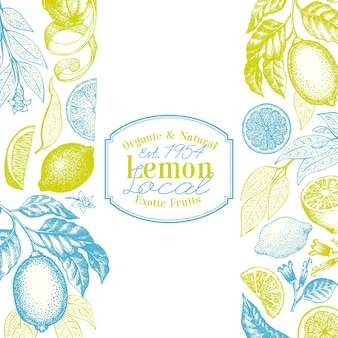Retro citrus frame background. lemon tree design template