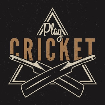 Retro cricket logo.