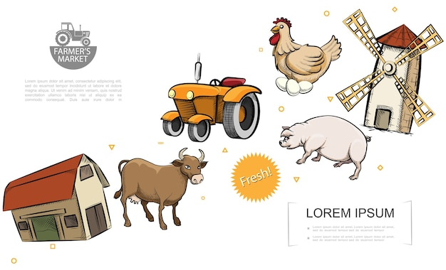 Retro farm colorful template