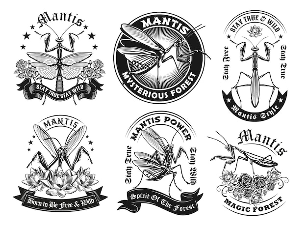 Retro label designs with mantis set