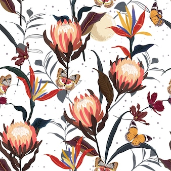 Retro protea flowers  botanical seamless pattern vector