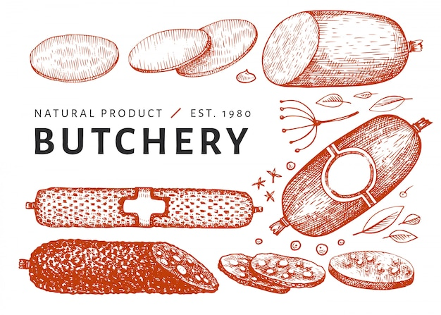 Retro vector meat illustration. hand drawn sausages, spices and herbs. raw food ingredients. vintage sketch.