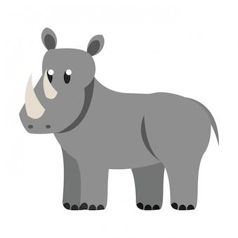 Rhino wild animal
