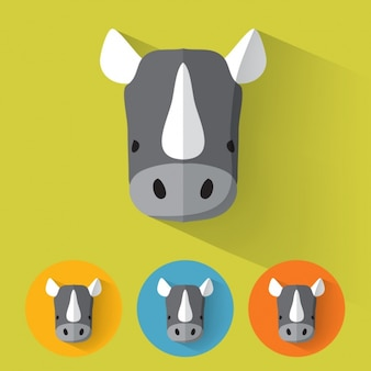 Rhino разрабатывает коллекцию